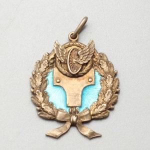 Нагрудный знак, голубая эмаль, серебро